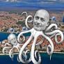Dogus-hobotnica