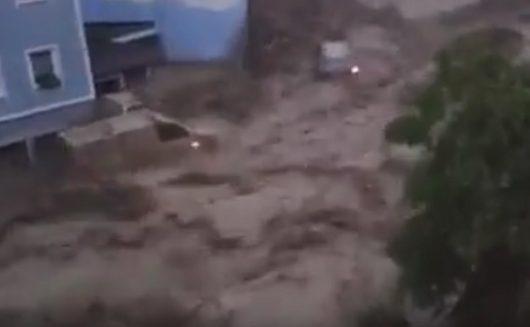 poplavanjemackaYT