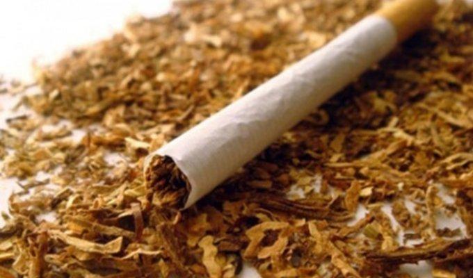 BENKOVAC Nedozvoljena trgovina duhanom